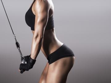 muscle; մկան; նստատեղ; գավակ; gluteus maximus